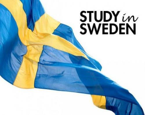 دوره زبان انگلیسی در سوئد (وِیزا تضمینی)