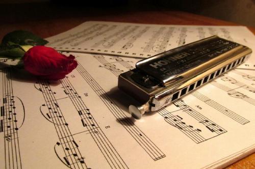 آموزشگاه موسیقی سیمرغ (مجوز درجه یک از وزارت ارشاد...)
