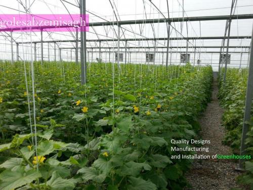 ساخت گلخانه طرح اسپانیای