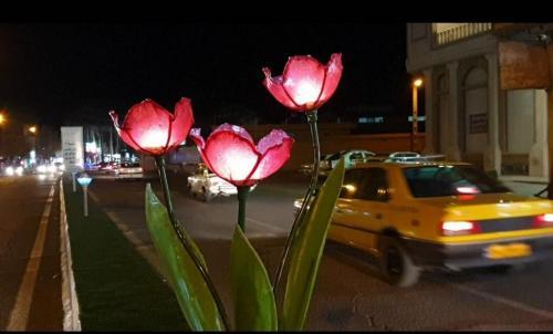 گلهای نوری مبلمان شهری