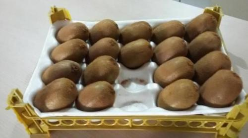 سینی فوم بسته بندی هلو-سینی فوم بسته بندی میوه