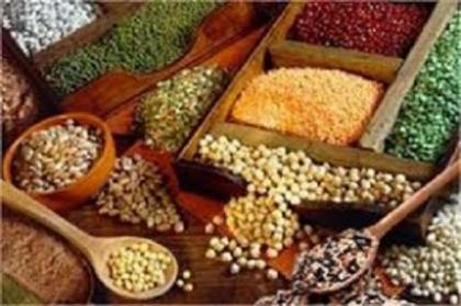 فروش دانه های روغنی – قیمت دانه های روغنی و مغز خوراکی